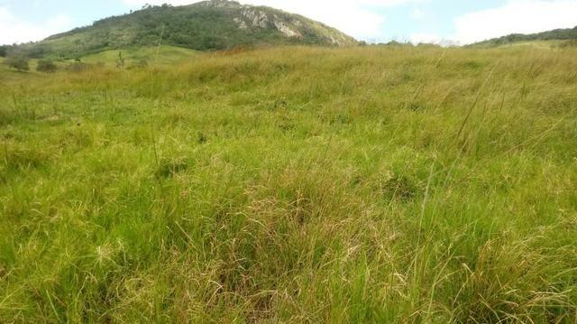 Sairé=Vend-25 mil por Hect. Fazenda com 200 Hectares-Pronta pra Criar Gado - Foto 14