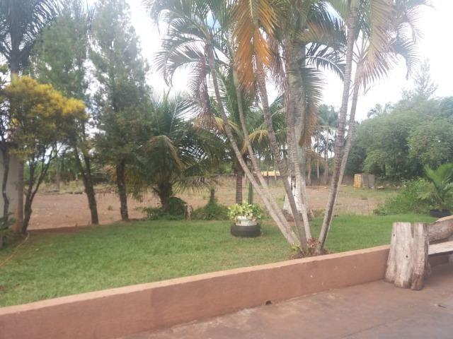 Locação - Chácara próximo à Av. Saul Elkind, 5000 m² com casa sede - Londrina/PR - Foto 4
