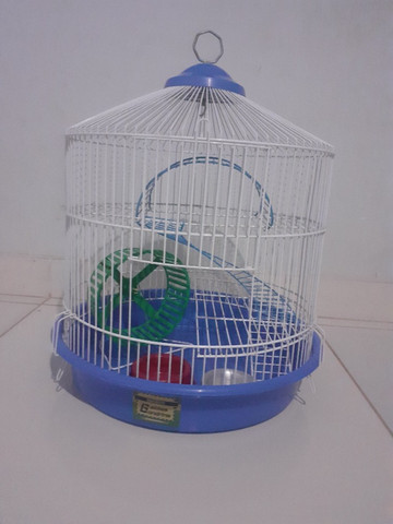 Kit gaiolas para hamsters: gaiola trasportadora e gaiola redonda 3 andares - Foto 6