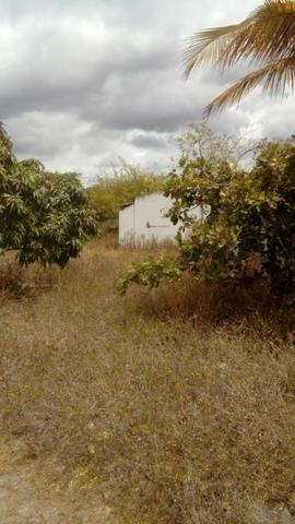 Chácara no Manduri - Foto 15