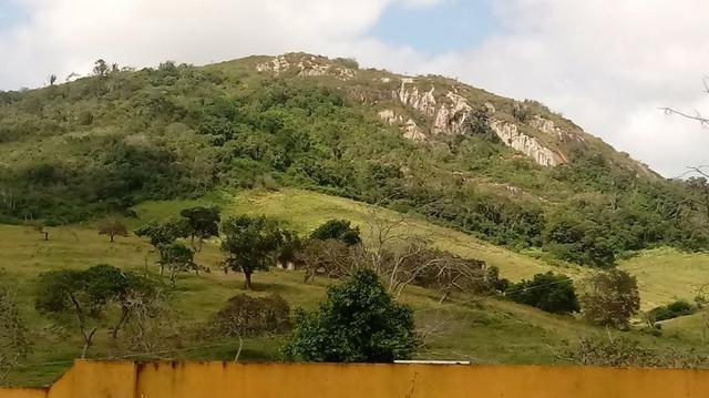 Sairé=Vend-25 mil por Hect. Fazenda com 200 Hectares-Pronta pra Criar Gado - Foto 6