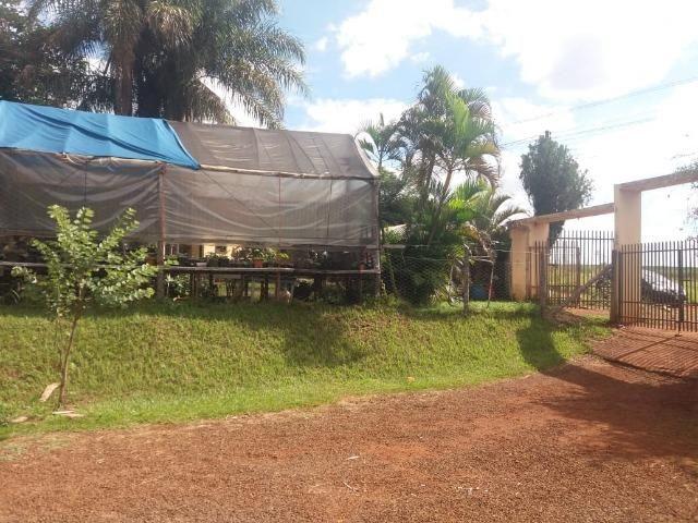 Locação - Chácara próximo à Av. Saul Elkind, 5000 m² com casa sede - Londrina/PR - Foto 7