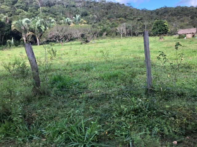 290 Hectares, Bom Jardim-MT, pecuária e lavoura, Oportunidade - Foto 3