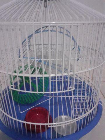 Kit gaiolas para hamsters: gaiola trasportadora e gaiola redonda 3 andares - Foto 2