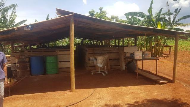 Vendo Chácara de porteira fechada em Planaltina GO , ou troco por Imóvel no DF - Foto 2