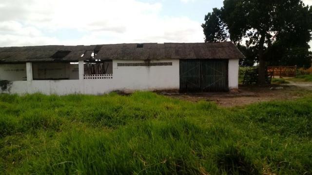 Sairé=Vend-25 mil por Hect. Fazenda com 200 Hectares-Pronta pra Criar Gado - Foto 15