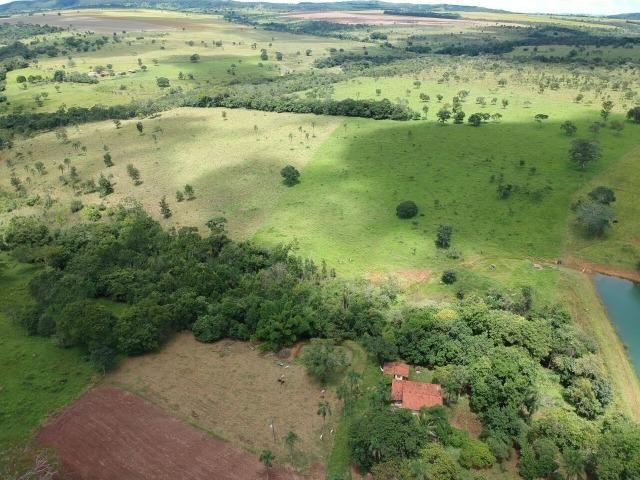 Fazenda 16,5 Alq - 50km de Goiânia - Hidrolândia - Entrada exclusiva - a 4 km da Rodovia - Foto 7