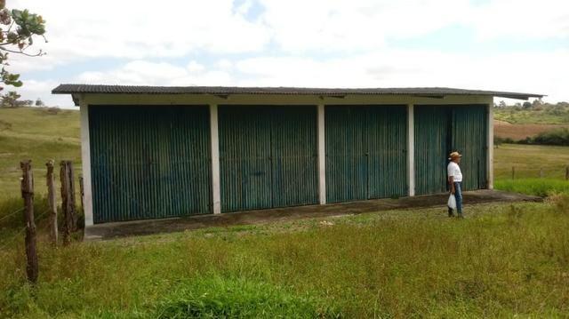 Sairé=Vend-25 mil por Hect. Fazenda com 200 Hectares-Pronta pra Criar Gado - Foto 8