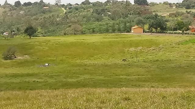 Sairé=Vend-25 mil por Hect. Fazenda com 200 Hectares-Pronta pra Criar Gado - Foto 13