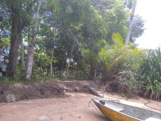 Venda Sítio as margens do Rio de Contas - Foto 3
