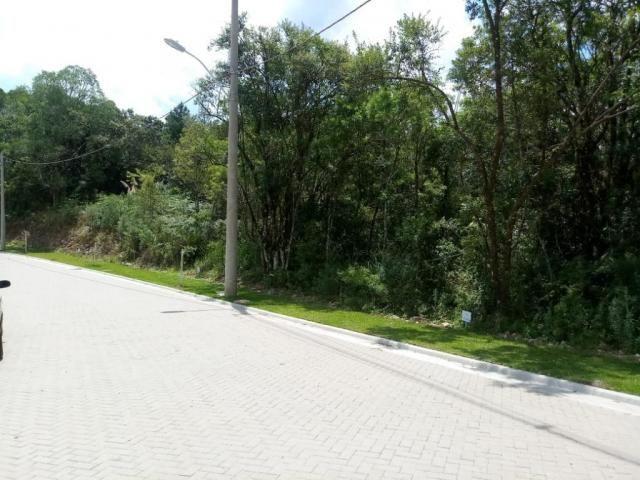 Terreno à venda, 724 m² por r$ 328.510,65 - prinstrop - gramado/rs - Foto 3