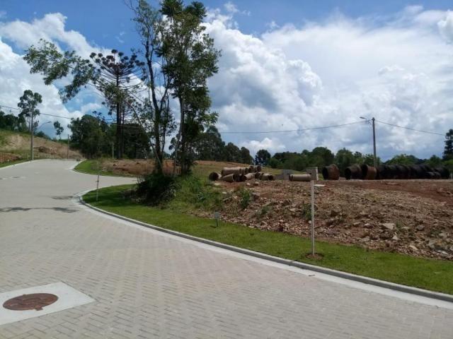 Terreno à venda, 596 m² por r$ 297.234,05 - prinstrop - gramado/rs - Foto 4