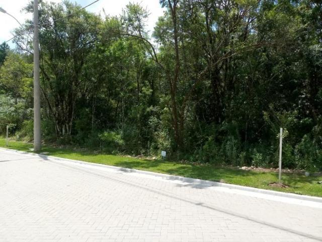 Terreno à venda, 724 m² por r$ 328.510,65 - prinstrop - gramado/rs - Foto 4