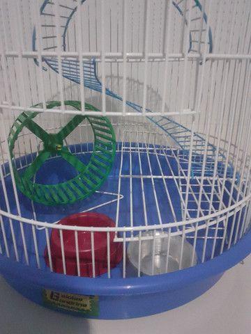 Kit gaiolas para hamsters: gaiola trasportadora e gaiola redonda 3 andares - Foto 3