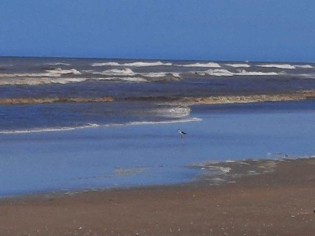 Terrenos na praia de Curumim RS - Foto 6