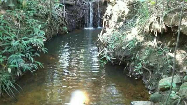 Fazenda Pindorama Tocantins