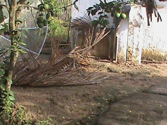 Sítio com 24x35 = 840m2, Vendo ou Troco , Em Tejucupapo, Goiana-PE - Foto 6