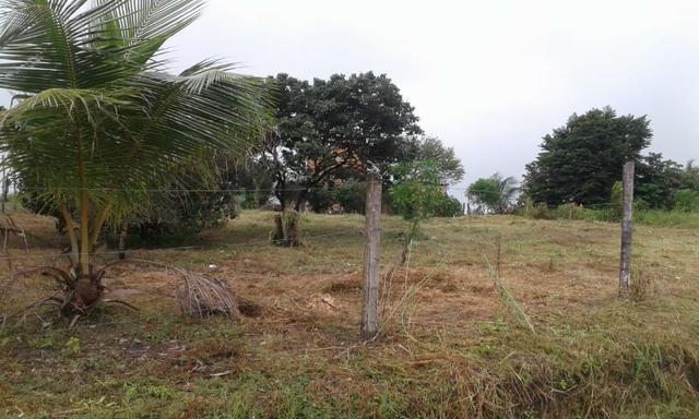 Vendo 2 Terrenos em Salinópolis-PA - Foto 6