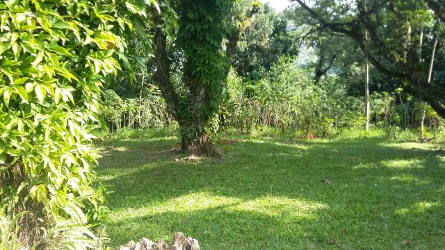 Lindo sítio em Guapimirim - Limoeiro oportunidade!!! - Foto 2