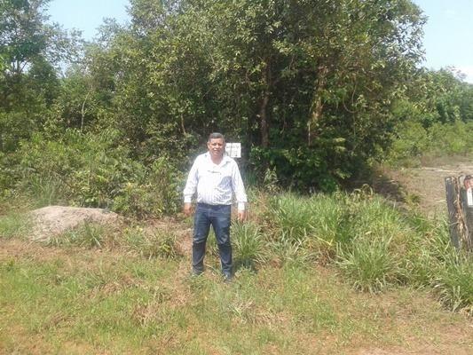 160 hectares,45 hectares eucaliptos, região de reserva do cabaçal- MT, Ocasião - Foto 3