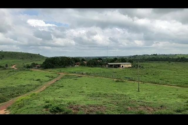 Vendo fazenda 300 alqueires (Margeando o Asfalto) - Foto 7