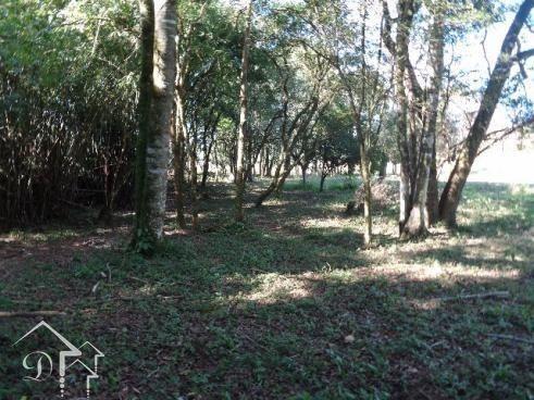 Chácara à venda em Zona rural, Santa maria cod:10004 - Foto 4