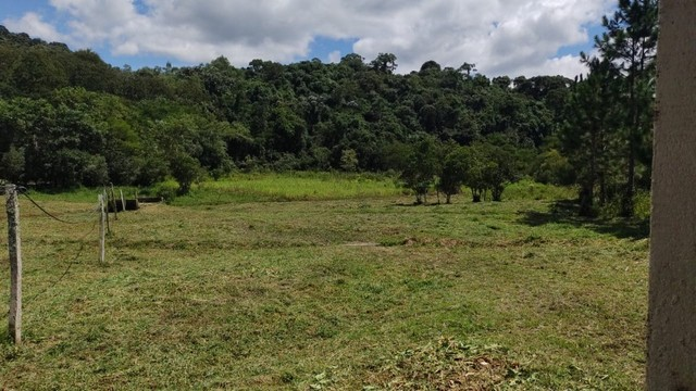 1m vendo terreno plaino matriculado - Foto 11