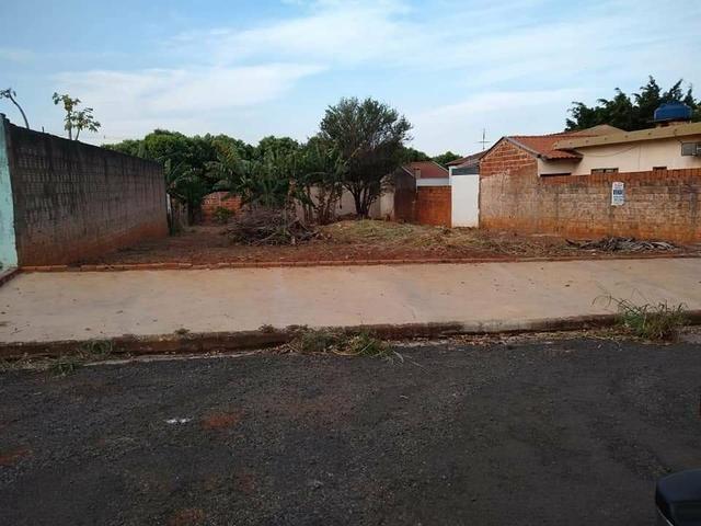 Terreno grande(490m²), com escritura, bairro Santo Expedito em JALES SP