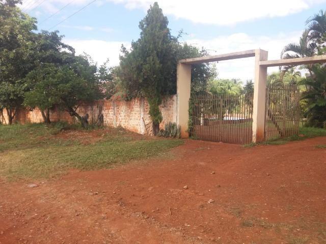 Locação - Chácara próximo à Av. Saul Elkind, 5000 m² com casa sede - Londrina/PR - Foto 2