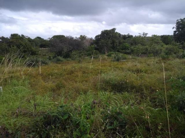 Terreno para alugar, 7200 m² por R$ 6.800,00/mês - Catu de Abrantes - Camaçari/BA - Foto 3