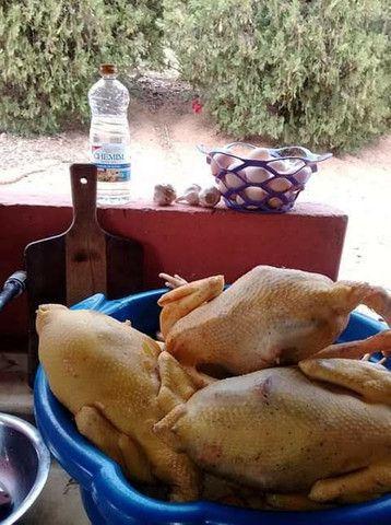 Galinhas caipiras, obs: meus frangos e galinhas  são crias de índio gigantes..  - Foto 6