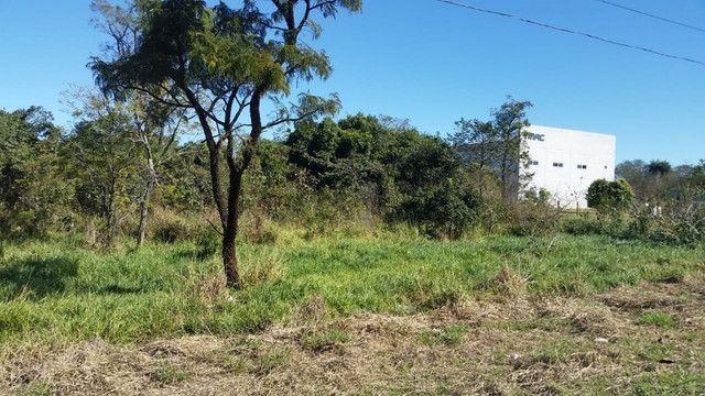 Área de 4 hectares e 9855 m². Saida para 3 Lagoas - Foto 2