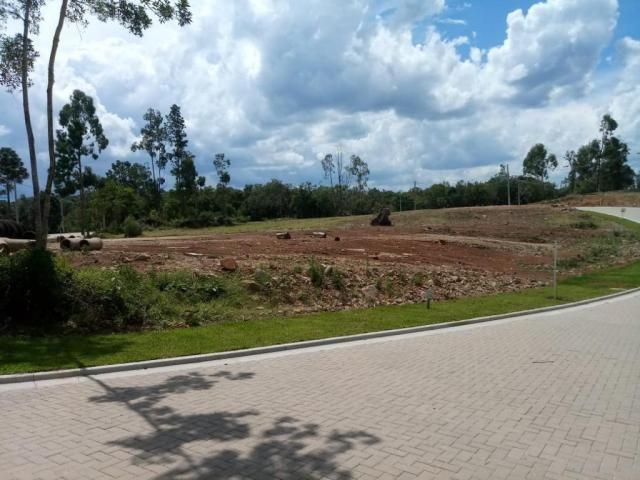 Terreno à venda, 596 m² por r$ 297.234,05 - prinstrop - gramado/rs
