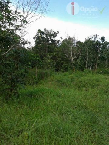 Chácara à venda, 24400 m² por R$ 115.000,00 - Zona Rural - Pirenópolis/GO - Foto 2