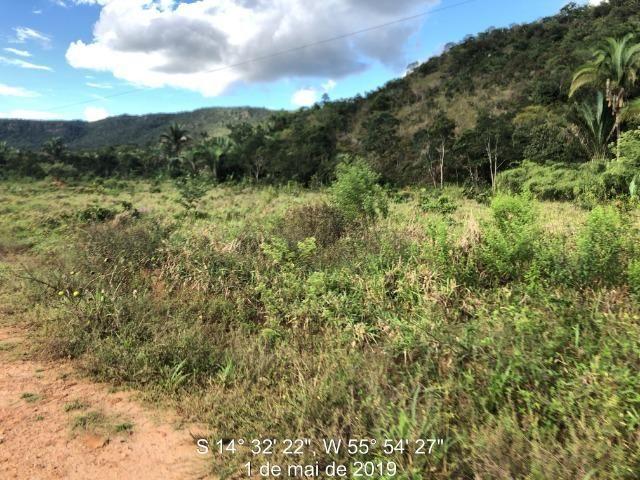 120 alqueires, pecuária e parte lavoura Bom Jardim-MT - Foto 5