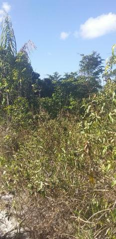 V/t terreno na Bahia - Foto 9