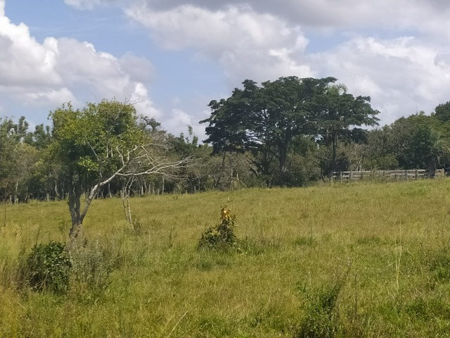 Velleda oferece sitio 3 hectares com casa e 2 açudes - Foto 2