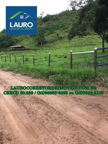 Fazenda com 70,6640 hectares (14,6 alqueires) a 11 km de Teófilo Otoni - Foto 10