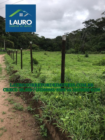 Fazenda com 70,6640 hectares (14,6 alqueires) a 11 km de Teófilo Otoni - Foto 16