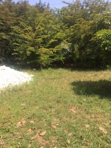 Ótimo Sítio 1,6 Hectares na Área Rural de Olinda, Aceito Automóvel ou imóvel - Foto 20