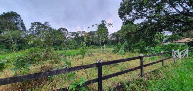 Chácara com 7 Hectares de Área em Aldeia - Foto 15