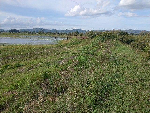Vendo 40 hectares - Foto 4