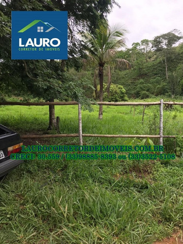 Fazenda com 70,6640 hectares (14,6 alqueires) a 11 km de Teófilo Otoni - Foto 9