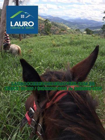 Fazenda com 70,6640 hectares (14,6 alqueires) a 11 km de Teófilo Otoni - Foto 13
