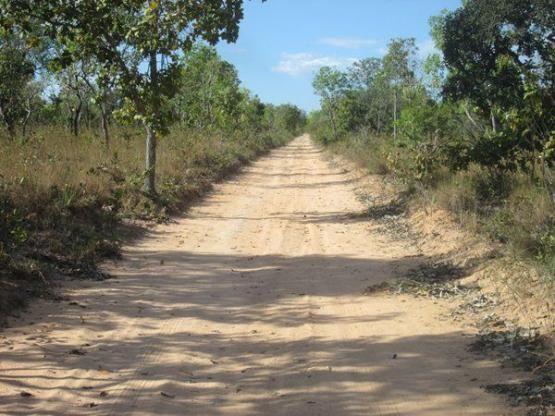 Fazenda Ponte Alta - TO - Foto 13