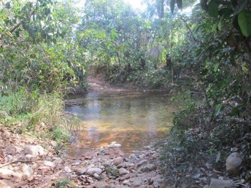 Fazenda Ponte Alta - TO - Foto 4