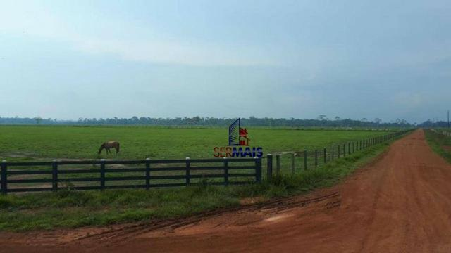 Fazenda muito bem localizada nas proximidade de Cujubim/RO - Foto 4