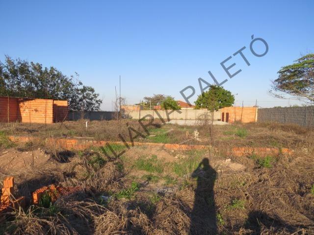 REF 762 Terreno 1289 m², todo murado, totalmente plano, Imobiliária Paletó - Foto 12