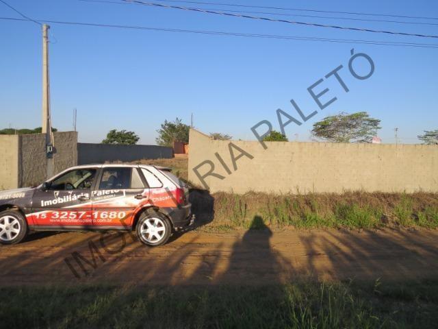 REF 762 Terreno 1289 m², todo murado, totalmente plano, Imobiliária Paletó - Foto 4