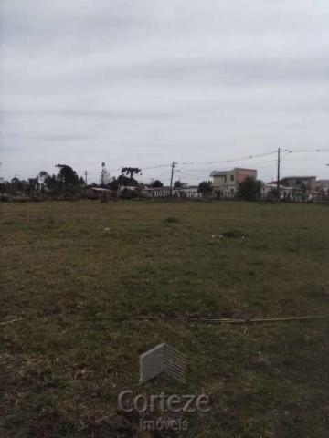 Terreno amplo no Costeira - Foto 8